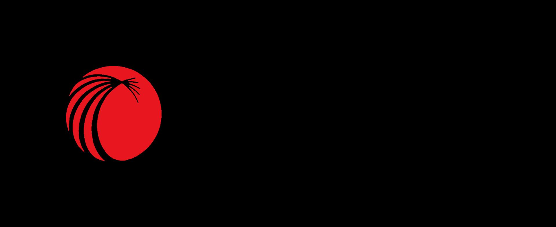 LexisNexis Financial Services Solutions logo