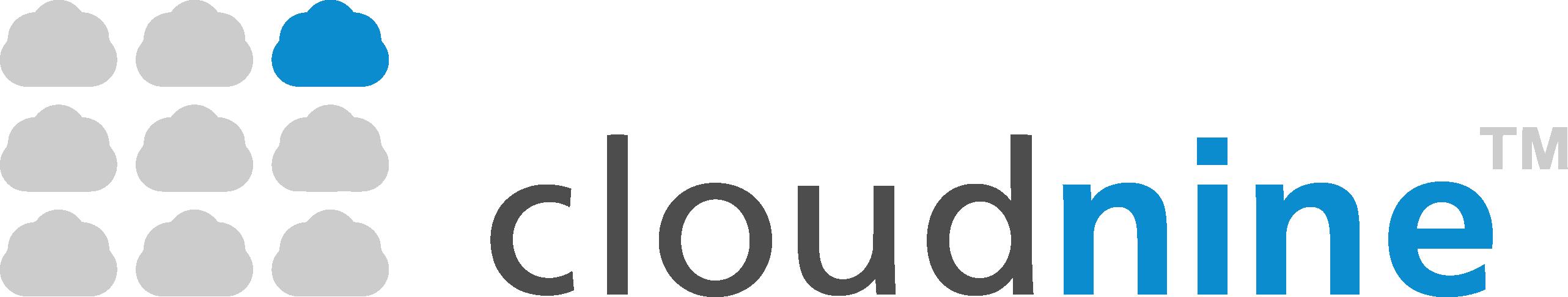 CloudNine eDiscovery logo