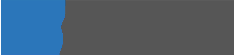 Birdeye Interactions logo